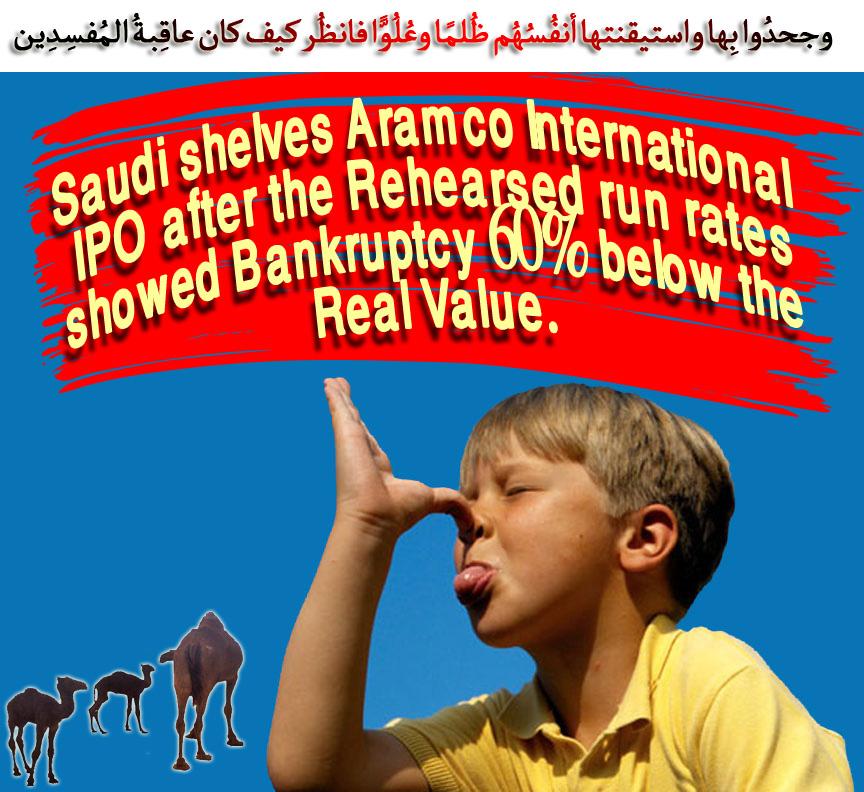Saudi-shelves-Aramco-Intern