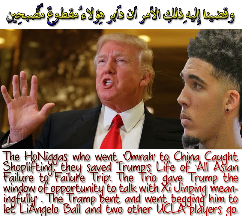 🐪🐫 The HoNiggas who went 'Omrah' to China Caught Shoplifting, they saved Trump's Life of 'All Asian Failure to Failure Trip'. The Trio gave Trump the window of opportunity to talk with Xi Jinping 'meaningfully' . The Tramp bent and went begging him to let LiAngelo Ball and two other UCLA players go. وقضينا إِليهِ ذلِك الأمر أنّ دابِر هؤُلاء مقطُوعٌ مُّصبِحِين 🐫🐪🐫