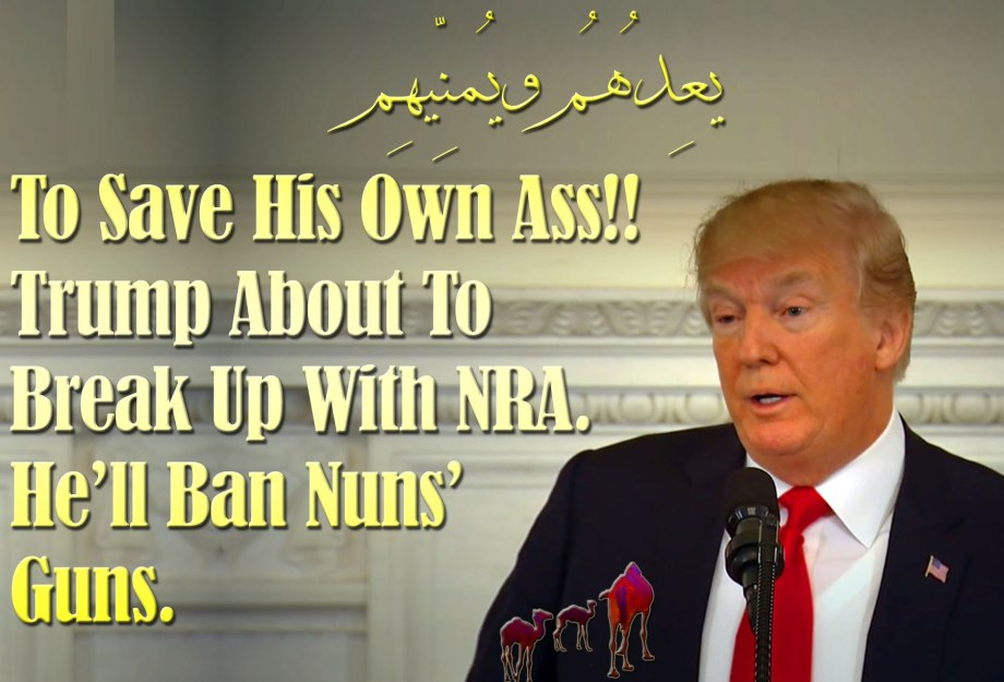 🐪To Save His Own Ass!! Trump About To Break Up With NRA. He'll Ban Nuns' Guns. يعِدُهُم ويُمنِّيهِم 🐫