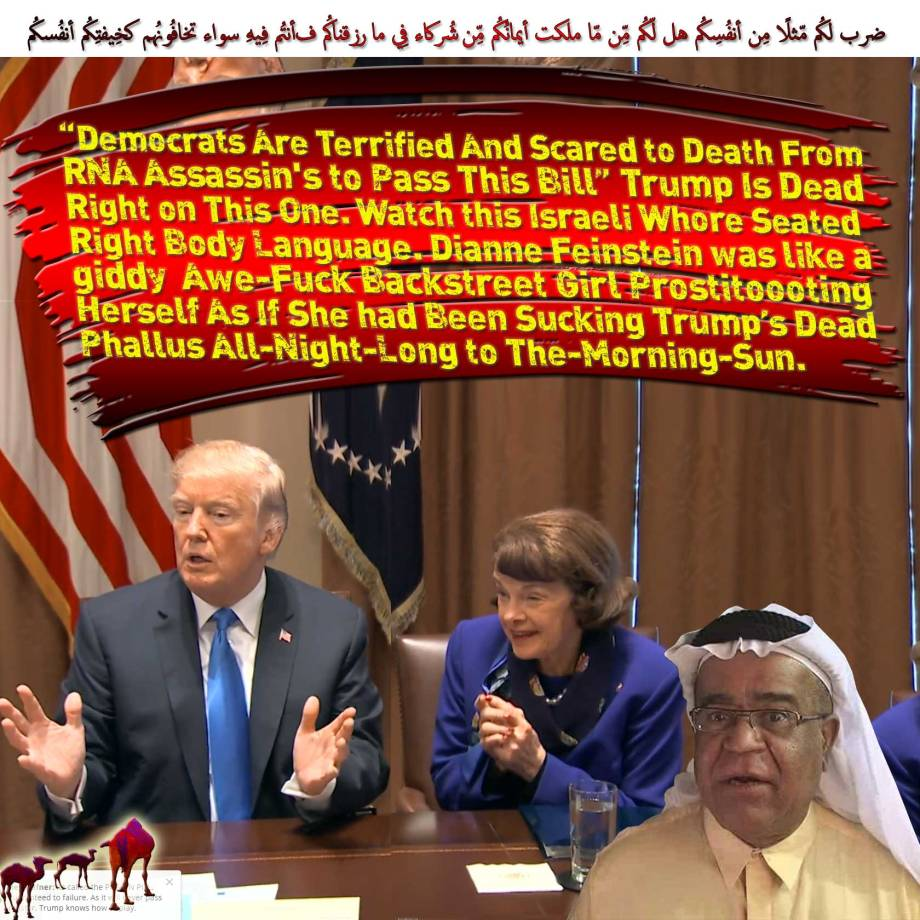 "🐫Trump Is Dead Right on This One; ""Democrats Are Terrified And Scared to Death From RNA Assassin's to Pass This Bill"". Watch this Israeli Whore Seated-Right Body Language. Dianne Feinstein was like a giddy Awe-Fuck Backstreet Girl Prostitoooting Herself As If She had Been Sucking Trump's Dead Phallus All-Night-Long to The-Morning-Sun. ضرب لكُم مّثلًا مِن أنفُسِكُم هل لّكُم مِّن مّا ملكت أيمانُكُم مِّن شُركاء فِي ما رزقناكُم فأنتُم فِيهِ سواء تخافُونهُم كخِيفتِكُم أنفُسكُم كذلِك نُفصِّلُ الآياتِ لِقومٍ يعقِلُون🐪"