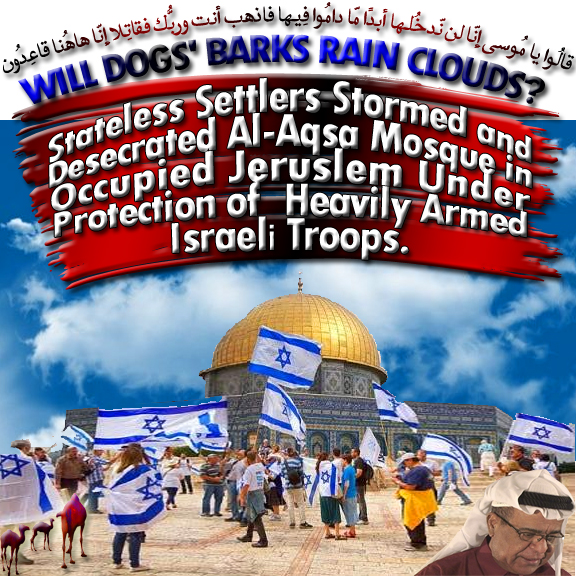 🐪Will Dogs' Barks Rain The Clouds? Stateless Settlers Stormed And Desecrated Al-Aqsa Mosque In Occupied Jerusalem Under Protection Of Heavily Armed Israeli Troops. قالُوا يا مُوسى إِنّا لن نّدخُلها أبدًا مّا دامُوا فِيها فاذهب أنت وربُّك فقاتِلا إِنّا هاهُنا قاعِدُون🐫