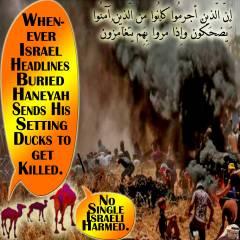Not-Single-Israeli-Harmed.